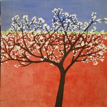Cerisier_japonais