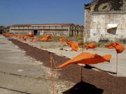 Arles_1