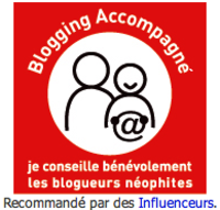 Blogging accompagné