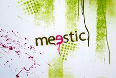 Meestic2194a